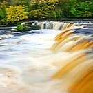 Waterfalls of the Yorkshire Dales Calendar by Stephen Knowles