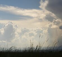 After the Storm, Uganda by tamarinf