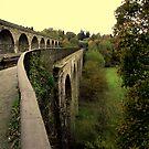 Chirk Aqueduct Powys(2) by lorainek