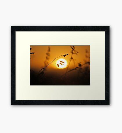 Le Fin Framed Print