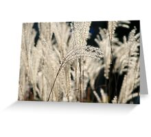 Urban Grasses Greeting Card