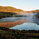 Early Morning Fog - Basin Pond by T.J. Martin