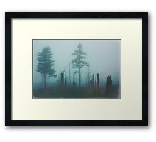 Dark forest Framed Print