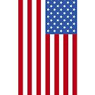 US Flag by SOIL