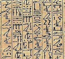 Papyrus by SOIL