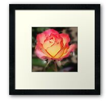 To Say I Love You Framed Print