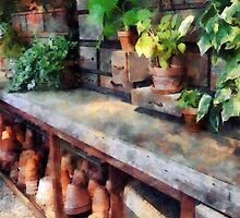 Greenhouse with Flowerpots by Susan Savad