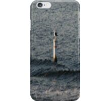 Bird On Pole... iPhone Case/Skin