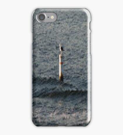 Bird On Pole... iPhone Case/Skin