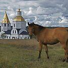 Russian landscape by VallaV