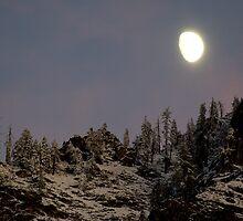 """""""Moon Glow"""" by Lynn Bawden"""