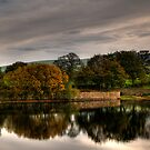 Bottom&#x27;s Reservoir - Take 2 by Aggpup