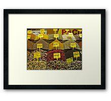 The Egyptian Spice Market Framed Print