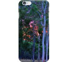 Sunset in the bush iPhone Case/Skin