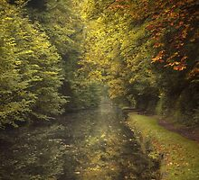 Autumn on the Grand Union Canal by Chris Fletcher