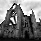 Tintern Abbey by Samantha Higgs