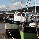 boats of ireland 2 by Leah Gay