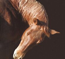 Red Horse II by Ginny Luttrell