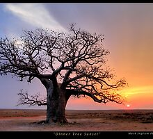 Dinner Tree Sunset by Mark Ingram Photography
