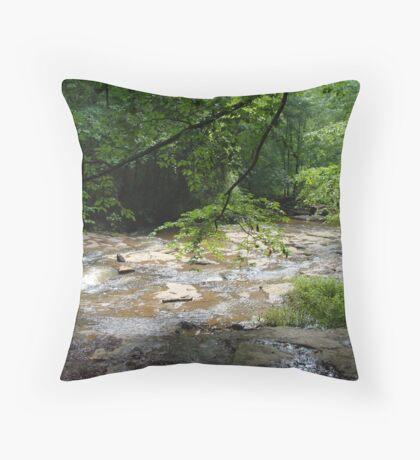 Elder Mill Creek Throw Pillow