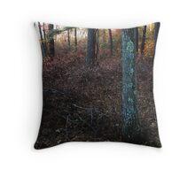 November Rainbow Throw Pillow