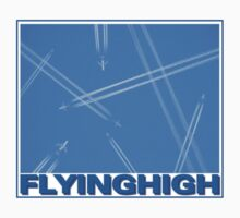 Flying High by Harvey Schiller