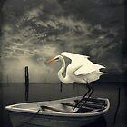 Dare to Discover... by Karen  Helgesen