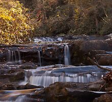 Coker Creek Falls  by Shane Jones