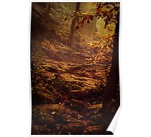 Autumnal mood #1 Poster