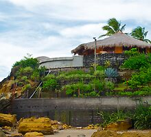 Beach house on Casares Beach, Nicaragua, Central America No. 2 by thebigmozey