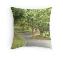 Country Drive Throw Pillow