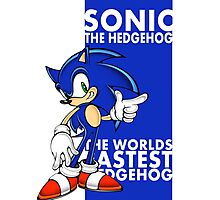 The Worlds Fastest Hedgehog Photographic Print