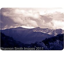 The Great Smoky Mountains Photographic Print