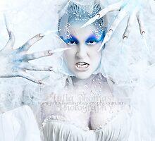 The Ice Bitch by Julia  Thomas