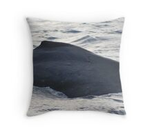 Dorsal Fin - Humpback Whale Throw Pillow
