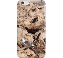 Seagull On Rocks... iPhone Case/Skin