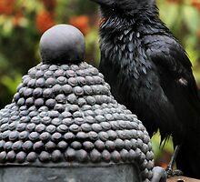 Buddha and crow by Robyn Lakeman