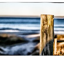 Collingwood Beach 3 by Tony O'Leary