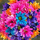 The Most Colorful Flowers by Doty
