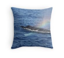 Humpback Rainblow Throw Pillow