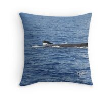 Humpback Curious Calf Throw Pillow