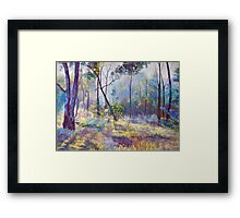 Symphony of Bush Colours Framed Print
