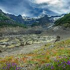 The Black Glacier, Monte Tronador, Argentina by strangelight
