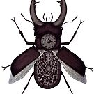Stag beetle clock surreal black and white pen ink drawing by Vitaliy Gonikman