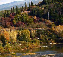 Toscana by Rae Tucker