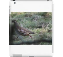 Red Legged Partridge. iPad Case/Skin