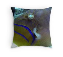 Such cool looking eyes Throw Pillow