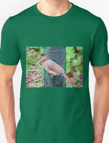 Pretty Female Northern Cardinal T-Shirt