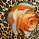 Leopard Rose by Mistyarts