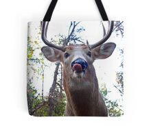 Hello down there - White-tailed Deer Tote Bag